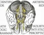 """BHB PRESENT KULIAH UMUM:  """"Optimalisasi Fungsi Otak Kanan Dan Kiri Agar Anak CerdasDan Kreatif"""""""