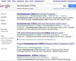 Dihalaman 1 Google Search Engine
